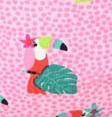 Parrots (pink)